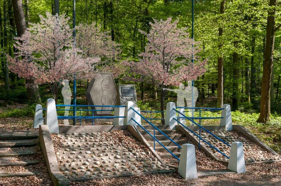 Proposed Monument Augmentation Design Hill 555
